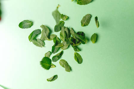 Mint leaves falling to the trendy solid green backdrop, ecology and messthetics concept, moody uneven light