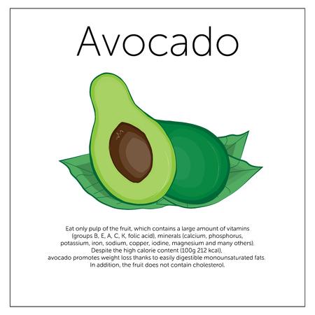 Illustration depicting a green avocado vintage card describing the benefits of avocado