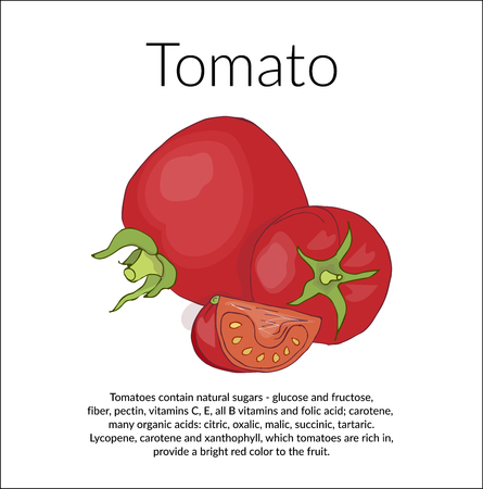 Illustration with the image of juicy red tomatoes, vintage card with a description of the benefits of tomatoes