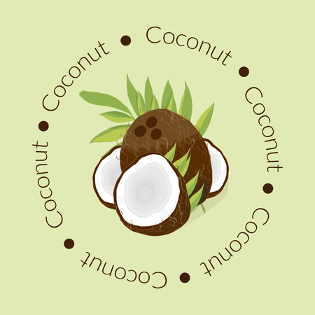 Illustration depicting a coconut logo on a green background