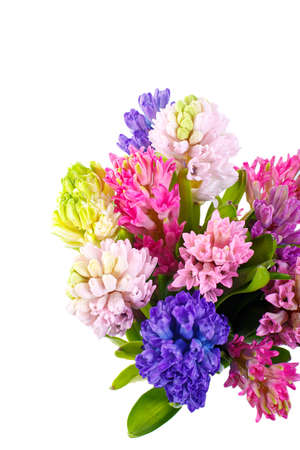 Lilac, blue, pink, raspberry hyacinths in a small, low bouquet. A holiday, a gift for a woman. Smart. View from above. Close up Isolated