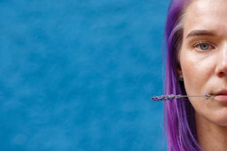 close-up of a female head, dyed purple hair, holding a lavender flower with her lips, blue background, freespace
