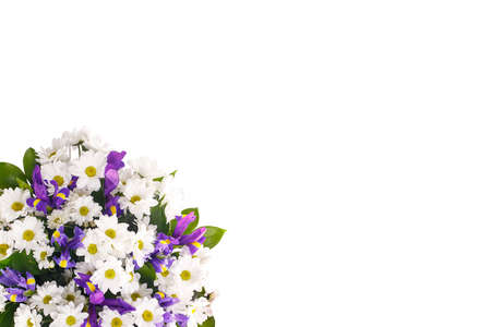 Bouquet of flowers from white chrysanthemums, chamomiles and violet irises, russus on a white isolated background. Color, contrast. A holiday, a gift for a woman, mom, postcard, free space