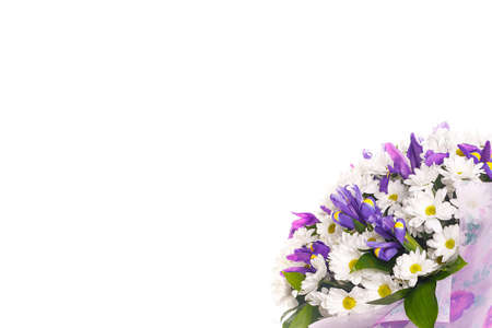 Bouquet of flowers from white chrysanthemums, chamomiles and violet irises, russus on a white isolated background, side view. Color, contrast. A holiday, a gift for a woman, mom, postcard, free space