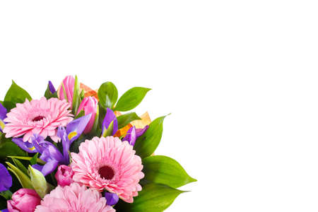 Bouquet of pink gerberas, violet irises and pink, crimson tulips on a white isolated background, close up. A holiday, a gift for a woman, mom, postcard, free space