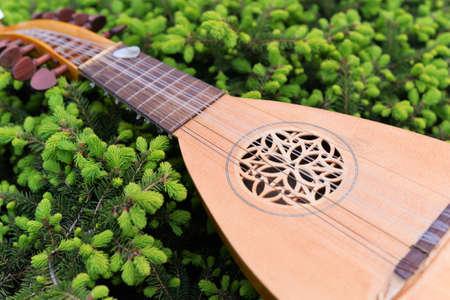 Stringed instrument Mandalina Stok Fotoğraf