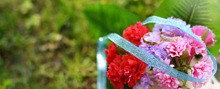 wedding rings gold on the colors of red and pink for lovers with ribbons