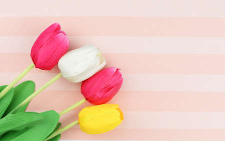 postcard beautiful flowers tulips on a striped background pink for Mothers Day holiday March 8 Stok Fotoğraf