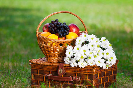 wicker basket with juicy fruits in the green garden