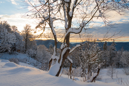 beautiful sunset in the winter  landscape of the mountain