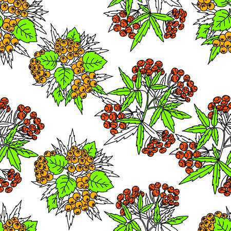 Seamless vector autumn pattern with red and orange berries,pine cone,nuts,flowers and leaves. olorful floral background.pattern for fashion,fabric and all prints on white background. Vetores