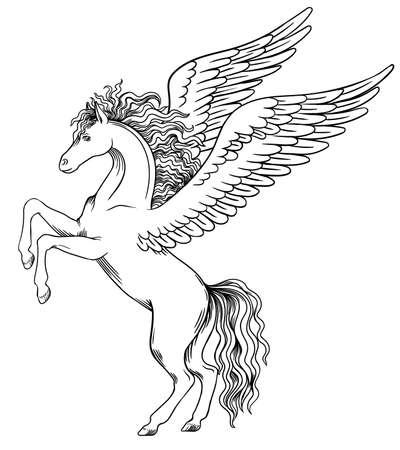 Pegasus décolle à l'avant. L'objet pour les armoiries