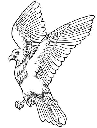 Eagle bird icon. Vector heraldic emblem of powerful wild falcon with stretching clutches.
