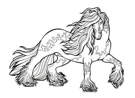 Horse runs trot. Coloring book. The horse runs trot. Coloring book. Tinker is a thoroughbred horse. Imagens - 131728426