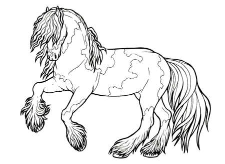 Horse runs trot. Coloring book. The horse runs trot. Coloring book. Tinker is a thoroughbred horse. Imagens - 131729531