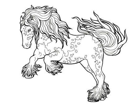 Horse runs trot. Coloring book. The horse runs trot. Coloring book. Tinker is a thoroughbred horse. Imagens - 131728511