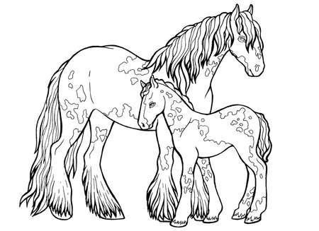 Horse runs trot. Coloring book. The horse runs trot. Coloring book. Tinker is a thoroughbred horse. Imagens - 131728547