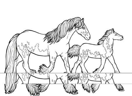 Horse runs trot. Coloring book. The horse runs trot. Coloring book. Tinker is a thoroughbred horse. Imagens - 131727975