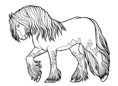 Horse runs trot. Coloring book. The horse runs trot. Coloring book. Tinker is a thoroughbred horse. Imagens - 131727957