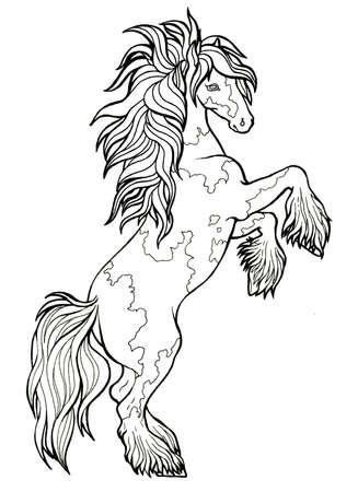 Horse runs trot. Coloring book. The horse runs trot. Coloring book. Tinker is a thoroughbred horse.