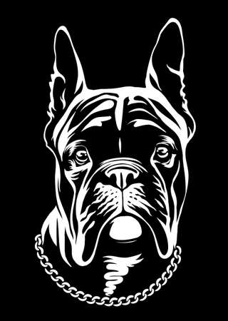 Handsome Black French Bulldog