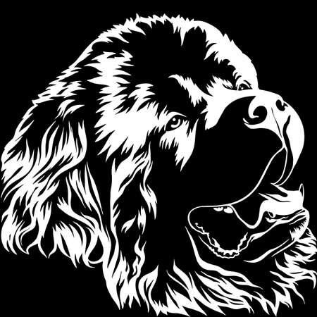 Terre-Neuve. Gros chien aux poils longs et épais. Grande race. Animaux préférés. Ami de l'humain. Illustration vectorielle réaliste.