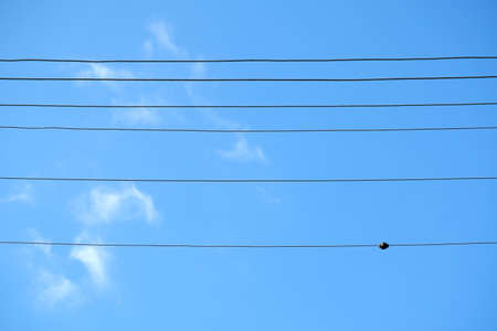 Electric wires against blue sky and few clouds background. Banco de Imagens