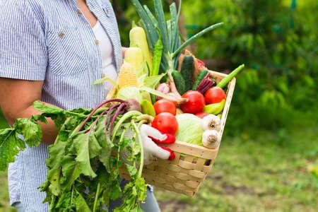 dikon: Mujer llevaba guantes con verduras frescas en el cuadro en sus manos. De cerca