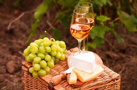 sorts: Various sorts of cheese, Two glasses of white wine in the vineyard. selective Focus