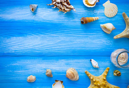 wood textures: Sea frame. Different marine items on blue wooden background. Sea objects on wooden planks. Selective focus. Place for text.