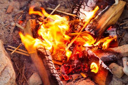 Closeup of blazing campfire coals, fire in nature