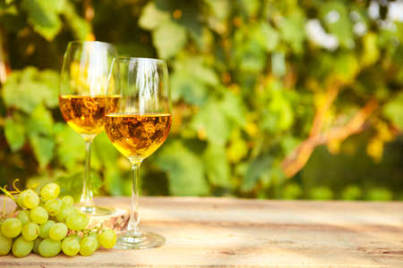 White grapes and two glasses of white wine in the vineyard