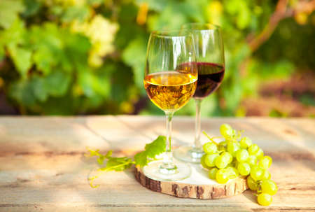 Green grapes and two glasses of the white and red wine on the vineyard background, close up