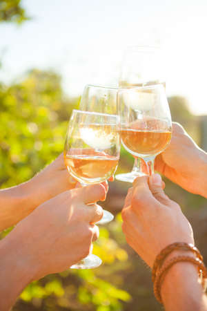 Hands with white wine toasting in garden picnic. Friends Happiness Enjoying Dinner Eating Concept.