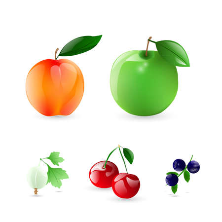 frutos rojos: Frutas y bayas