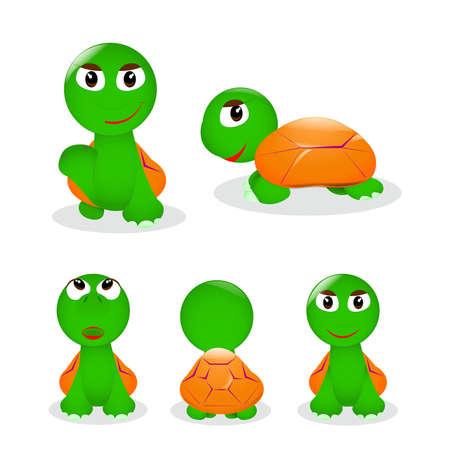 Funny cartoon turtles Stock Vector - 24615246