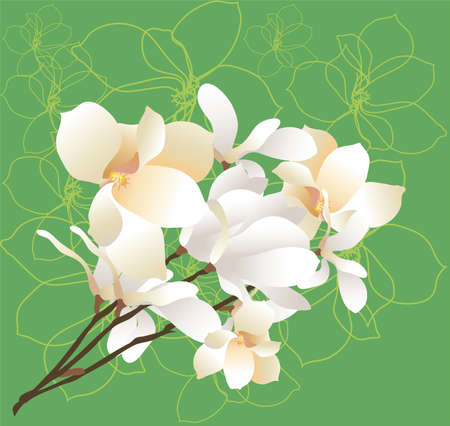 beautiful spring bouquet of lilies Vector