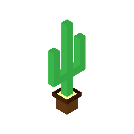 Cactus plant 3d vector and illustration design. isolated cactus in pots on a white background. isometry.