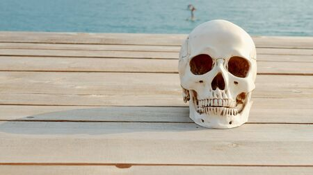 human skull on a wooden terrace with sea and sky view. copy space Reklamní fotografie