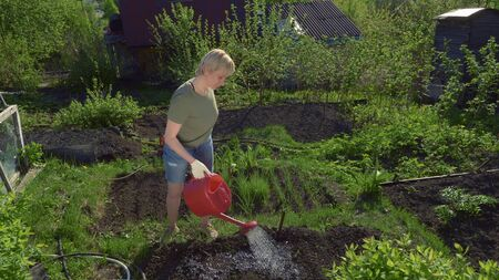 pretty young woman watering the soil in the garden from a red watering can
