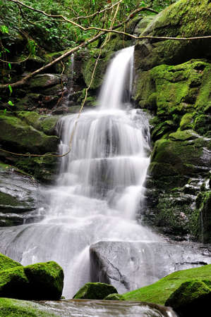 waterfall in forest: waterfall at poo soi dao, national park, thailand