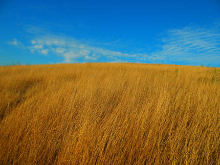 Grass field on a hill top and blue sky Stock Photo