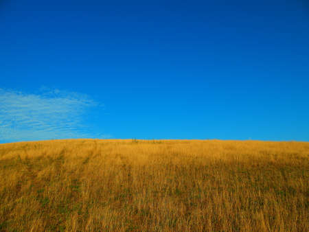 Grass field on a hill top and blue sky photo