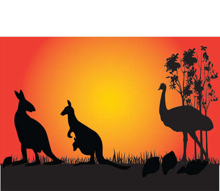 australia landscape: kangaroo and emu in the sunset