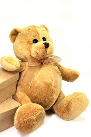 teddy berry beside some boxws on white background Stock Photo - 7637511