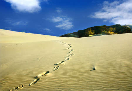 a track foot steps in the sand dunes photo