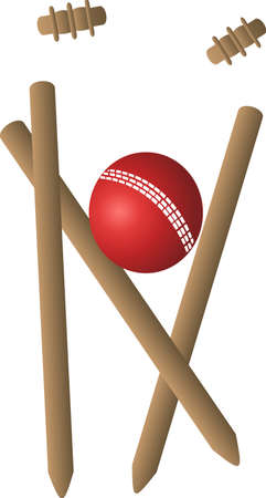 cricket ball and wicket 向量圖像