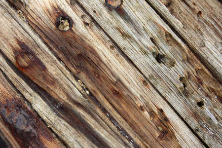 planks from an old wrecked ship with rusty nails photo