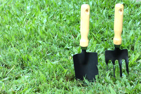 a garden fork and shovel on the lawn photo