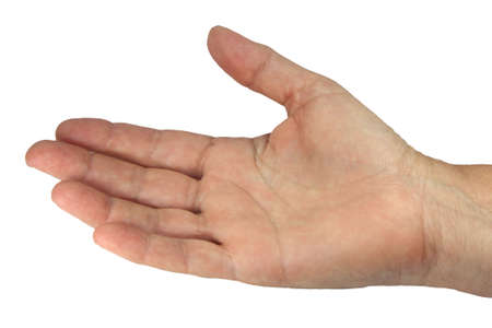 a young hand on a white background photo